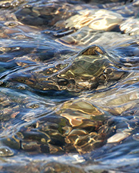 water flowing over rocks during ebbing tide